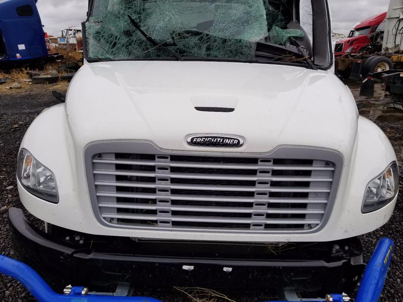 Semi Truck Hoods : Freightliner m stock  hoods tpi