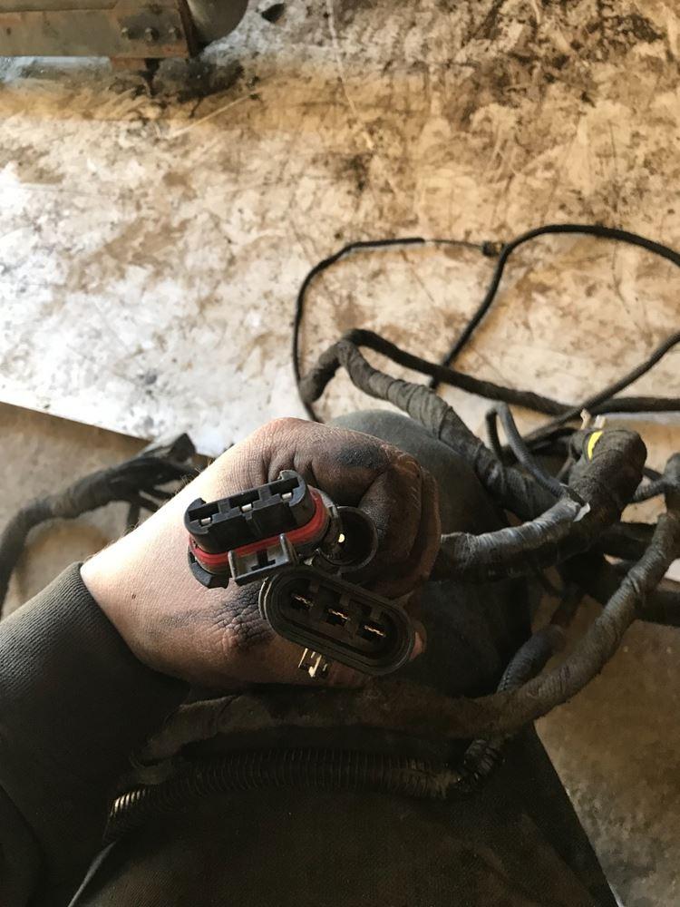 International stock sv wiring