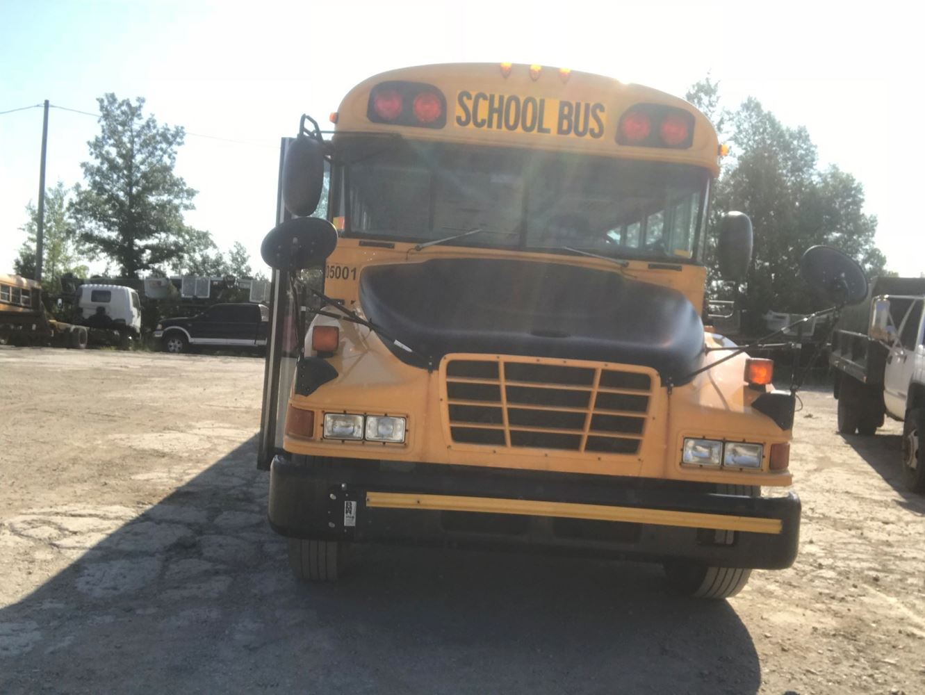 Blue Bird Bluebird School Bus (Stock #21114365)   BEETON