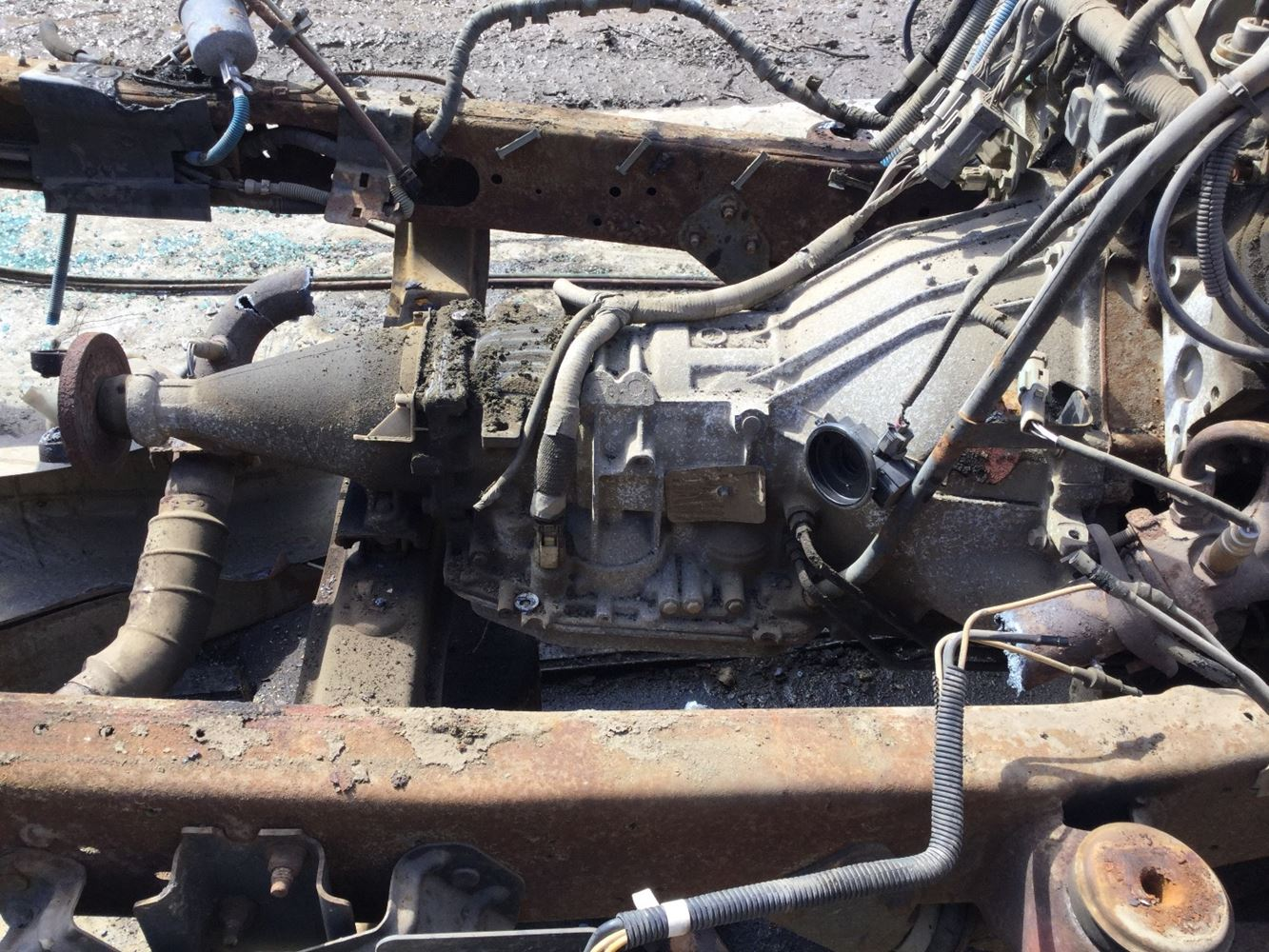 1999 Ford 4r70w  Stock  T