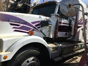 Western Star 4900 - Salvage IN1102