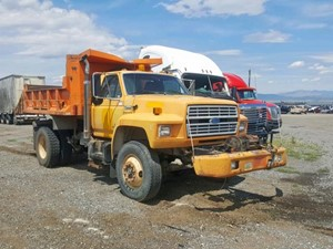 Ford F800 - Salvage 80219