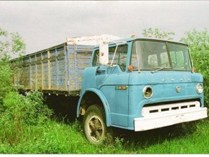 Ford F600 - Salvage 1766-FORD