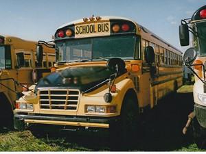 Blue Bird Bluebird School Bus - Salvage 3170-FRTLR BUS