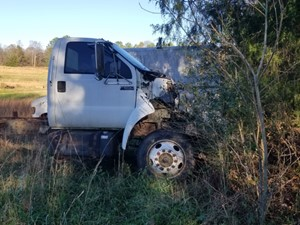 Ford F-650 - Salvage SV-15