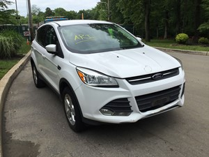 Ford Escape - Salvage T-SALVAGE-1874